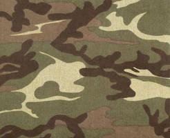 Army Paper Texture by powerpuffjazz