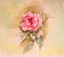 From a Secret Garden by aleena