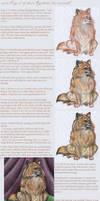 aku's 'Real' Fur Tutorial -2- by inu-aku-kitsune
