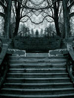 Premade Background 210 by AshenSorrow
