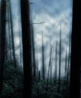 Premade Background 303 by AshenSorrow