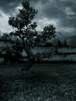 Premade Background 573 by AshenSorrow