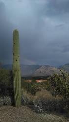 Tucson AZ Stock 44 by AshenSorrow