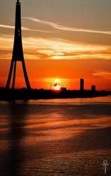 Sunset flight by Rolmopsis