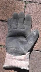 Abandoned Glove by shadhardblogger