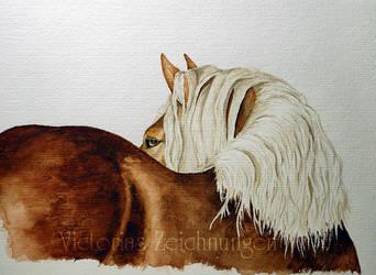 Draft Horse - watercolor by LittleMissRaven