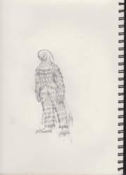 The Phantom Owl by bruiser128