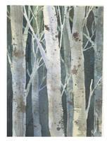 Birches 3 by Jackin