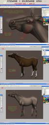 TUTORIAL - Rysowanie i Kolorowanie Konia  CZ.4 by WeronkaK