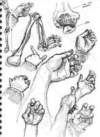 quick hand drawings... by oshimagun