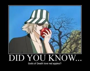 Did you know... by adidassk8erboy