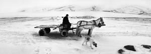 cart by alibektas