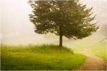 A Brand New Morning by DennisChunga