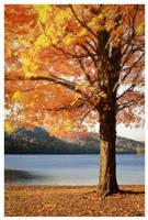 Autumn's Fire by DennisChunga