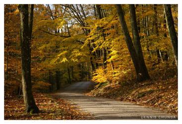 Autumn in New England by DennisChunga