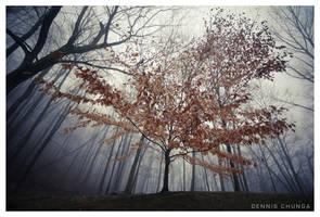 StandAlone by DennisChunga