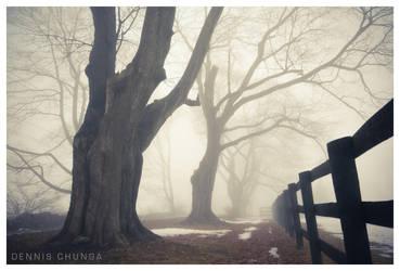 Winter Daze by DennisChunga