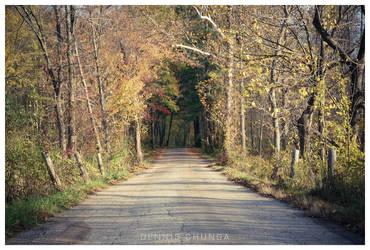 Autumn's Spring by DennisChunga