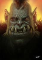 Orc by Disse86