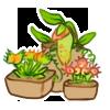 Mini Garden - Carnivore by LiticaHarmony