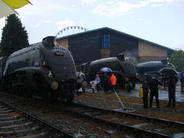 60007, 60019 and 4468 by matt-durkan-railways