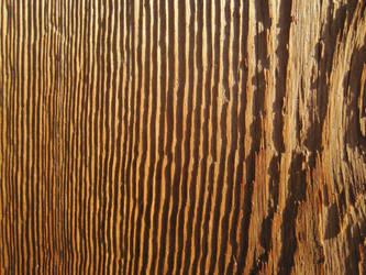 Cedar texture v3 by xenabrat
