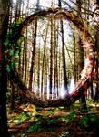 Portal Through The Woods by Asphodel-Foxx