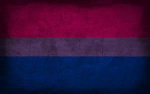 Bisexual Grunge Flag by Elthalen