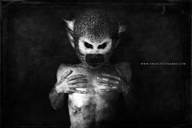 Monkey by skarabokki