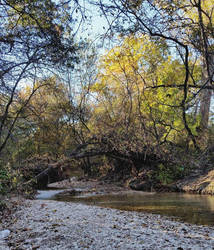 Creek bed by NHuval-stock