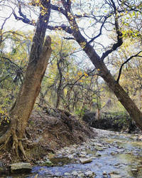 Creek Bed 2 by NHuval-stock