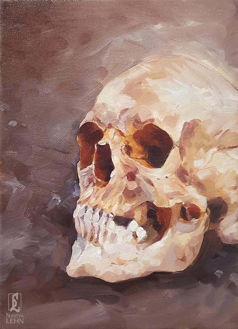 Oil study: skull by Nastya-Lehn