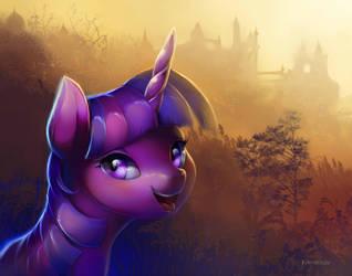 Shiny Twilight Portrait. by viwrastupr