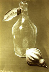 Bottle and pear by ElzaCircene