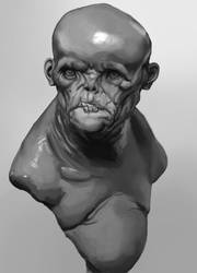 Bust Study after Boularis by S2uey