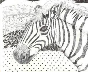 The Zebra by Panda-Boi