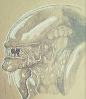 The Xenomorph by ravenclawtom