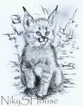 Little Lynx by NikySHouse
