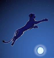 Moon Leap by Akril15