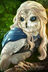 Game of owls- Daenerys Targaryowl by 4steex
