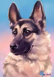 commission: German Shepherd portrait by 4steex