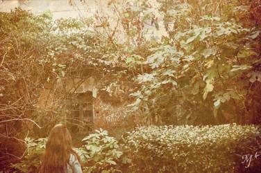 Autumn_October2 by Mia92