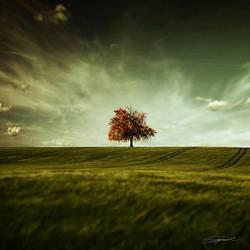 Crude Autumn by swinspeed