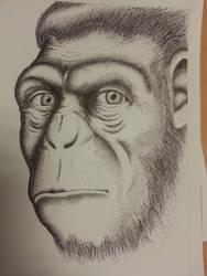 Neanderthal by kingbyname