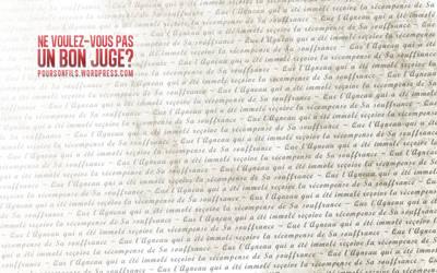 Ne voulez-vs pas un bon juge? by whitenine