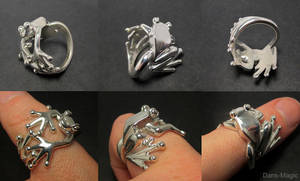 Frog Ring by EagleWingGallery