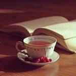 Pomegranate tea by vanillapearl