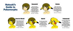 BFOI-Pokemon Hybrid Guide by Inkblot-Rabbit