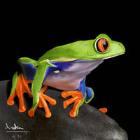 Sparkly frog by Anezka00