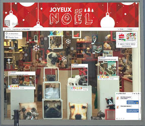 Vitrine de Noel Boutique Cadeau Maestro by NathanSvl